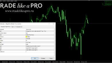 Photo of Информационный индикатор ShowImportantParams: трейдинг под контролем